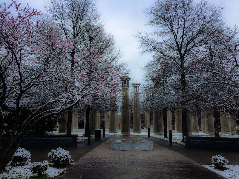 Paseo de la primavera en el parque de Nashville fotos de archivo libres de regalías