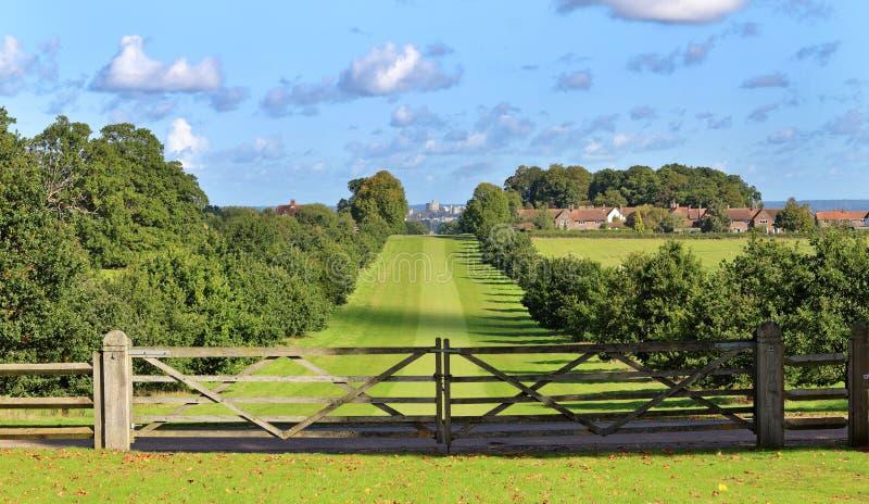 Paseo de la reina Anne en Windsor Great Park fotos de archivo