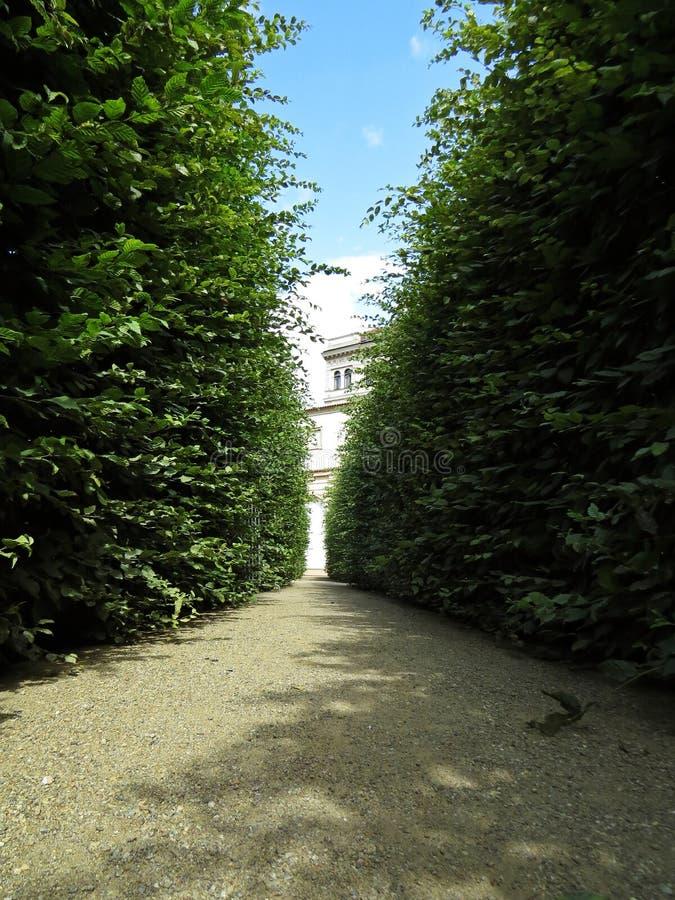Paseo de la trayectoria en Maze Garden Labyrinth Bushes fotografía de archivo libre de regalías
