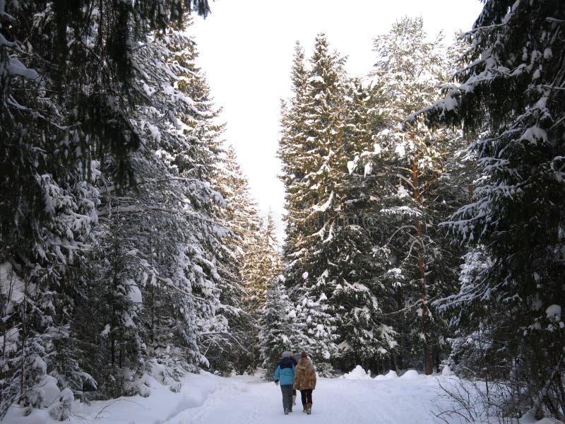 Paseo de las muchachas en la madera del invierno fotos de archivo