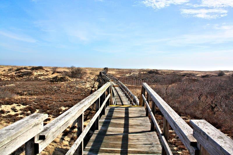 Paseo de madera del puente sobre las dunas de arena protegidas fotografía de archivo