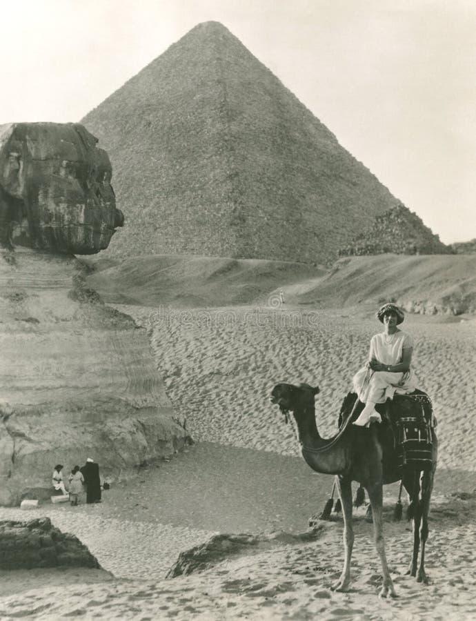 Paseo del camello en la esfinge y las pirámides foto de archivo libre de regalías