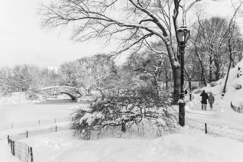 Paseo del invierno en el parque foto de archivo