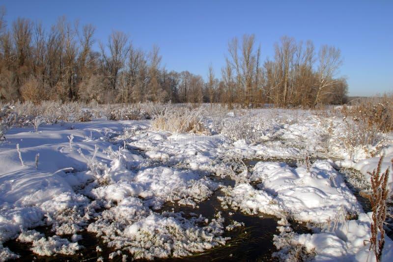Paseo del invierno a lo largo del río foto de archivo
