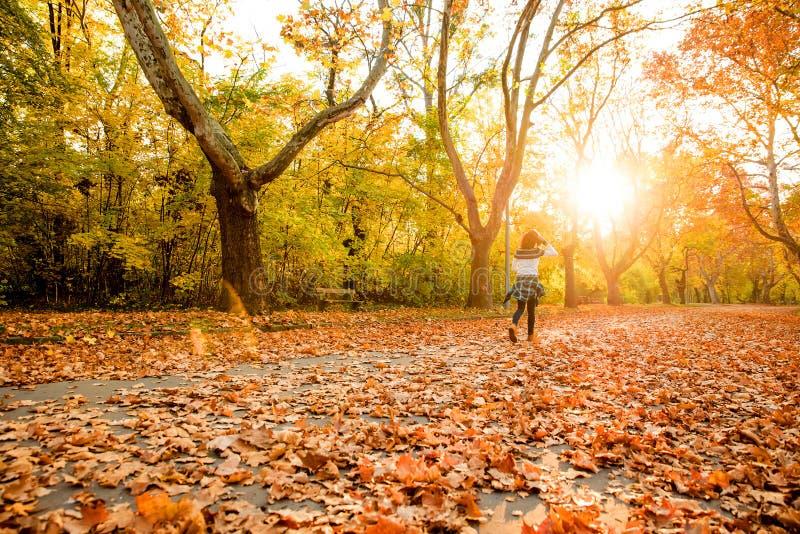 Paseo del otoño en el bosque fotos de archivo
