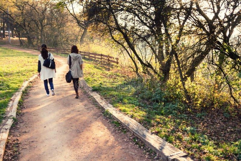 Paseo del otoño en un parque imagenes de archivo