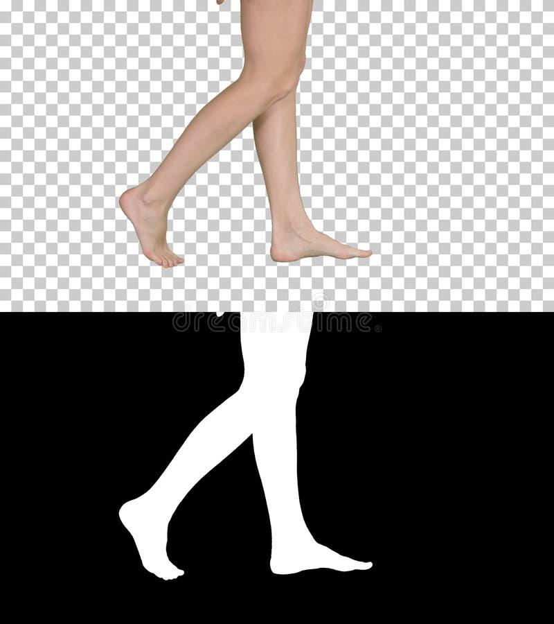 Paseo descalzo femenino hermoso, Alpha Channel fotos de archivo