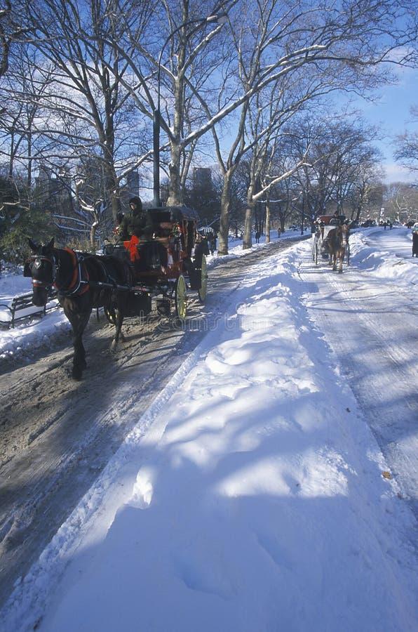 Paseo en Central Park, Manhattan, New York City, NY del carro del caballo después de la nevada del invierno fotos de archivo libres de regalías