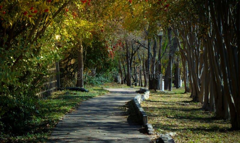 Paseo en parque imagen de archivo