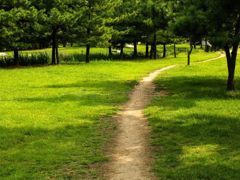 paseo en un parque de vecindad fotografía de archivo libre de regalías