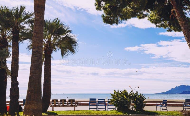 Paseo famoso de la playa del ` s de Croisette del ` de Cannes, plams y sillas azules imágenes de archivo libres de regalías