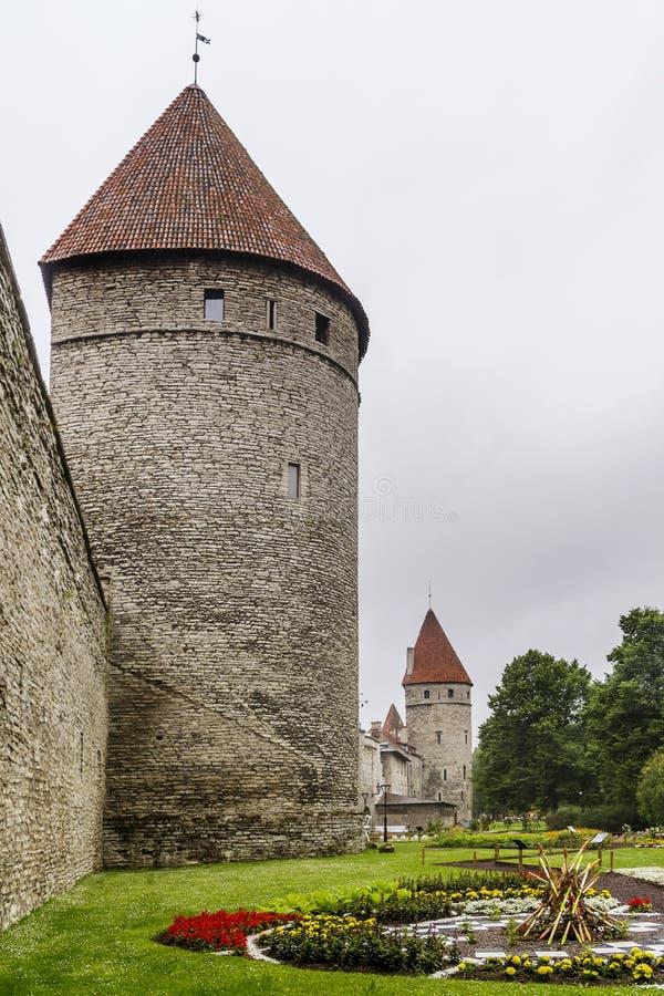 Paseo hermoso en el parque a lo largo de las paredes medievales de Tallinn, Estonia imagen de archivo