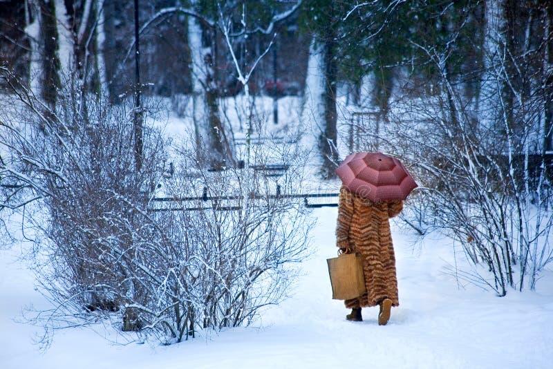 Paseo hivernal fotografía de archivo libre de regalías