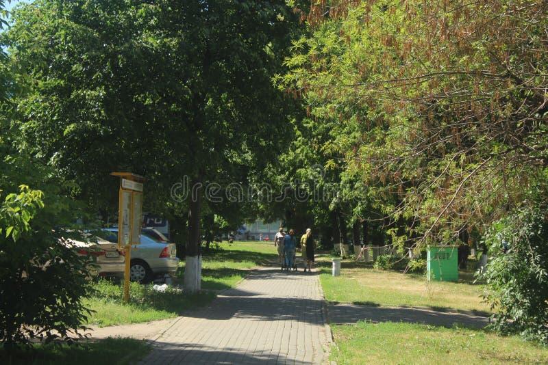 Paseo a Korolev Calle de Isaeva Zona del callejón foto de archivo libre de regalías