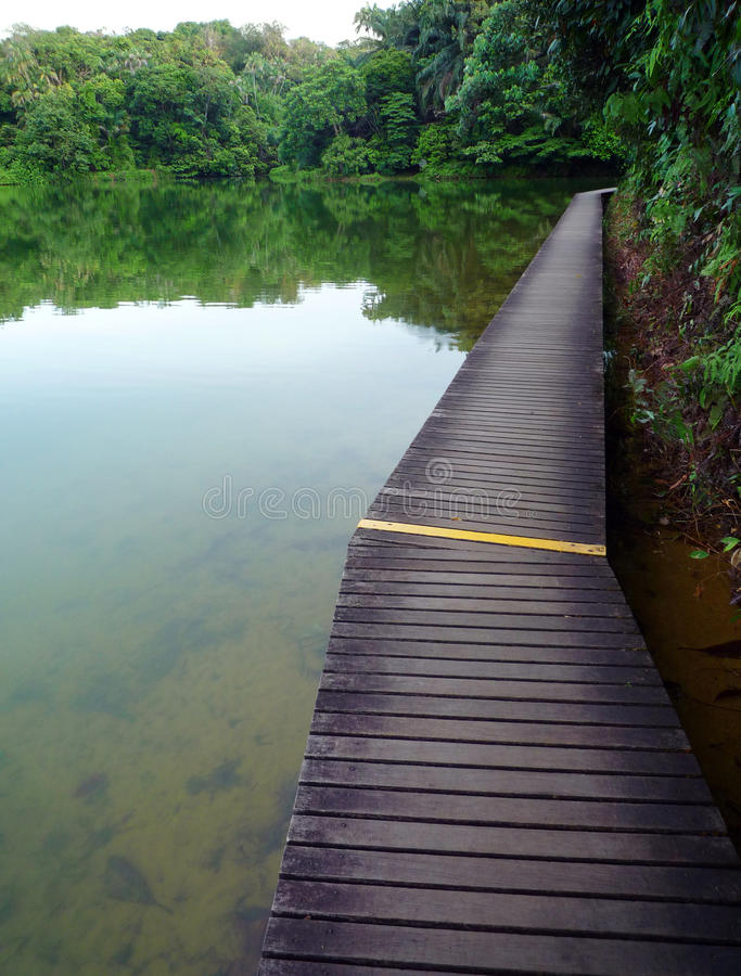 Paseo marítimo de madera en reserva de naturaleza foto de archivo
