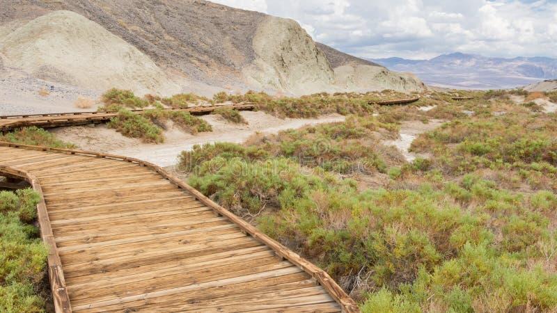 Paseo marítimo en la cala de la sal en el parque nacional de Death Valley foto de archivo