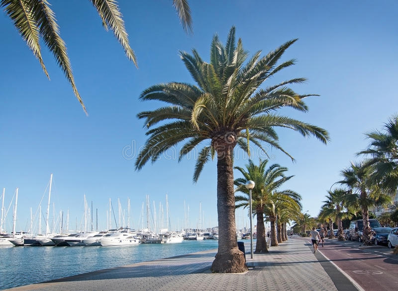 Download Paseo Maritimo photo stock éditorial. Image du jour, santa - 77151778