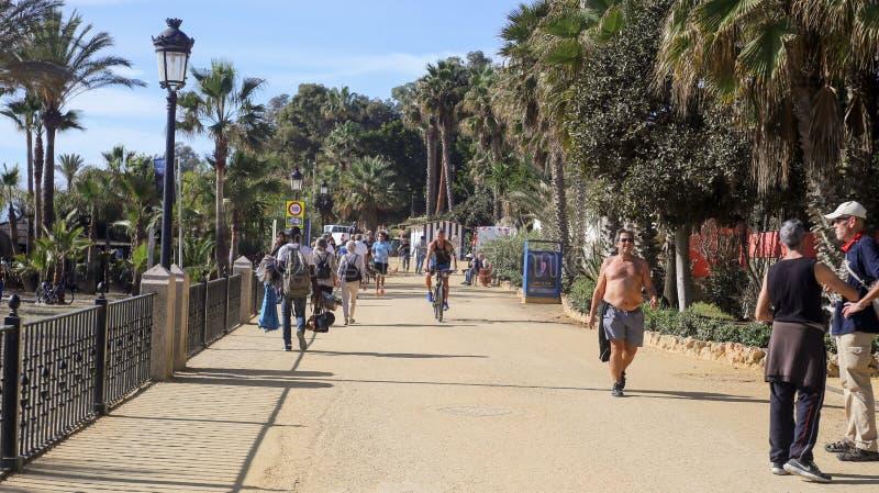 Paseo Maritimo Marbella arkivbild