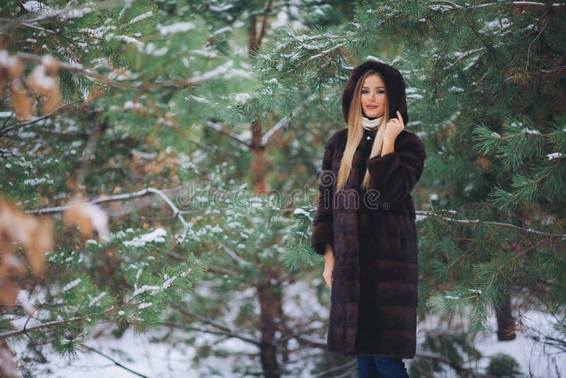 Paseo modelo joven de la muchacha en el bosque del invierno imágenes de archivo libres de regalías
