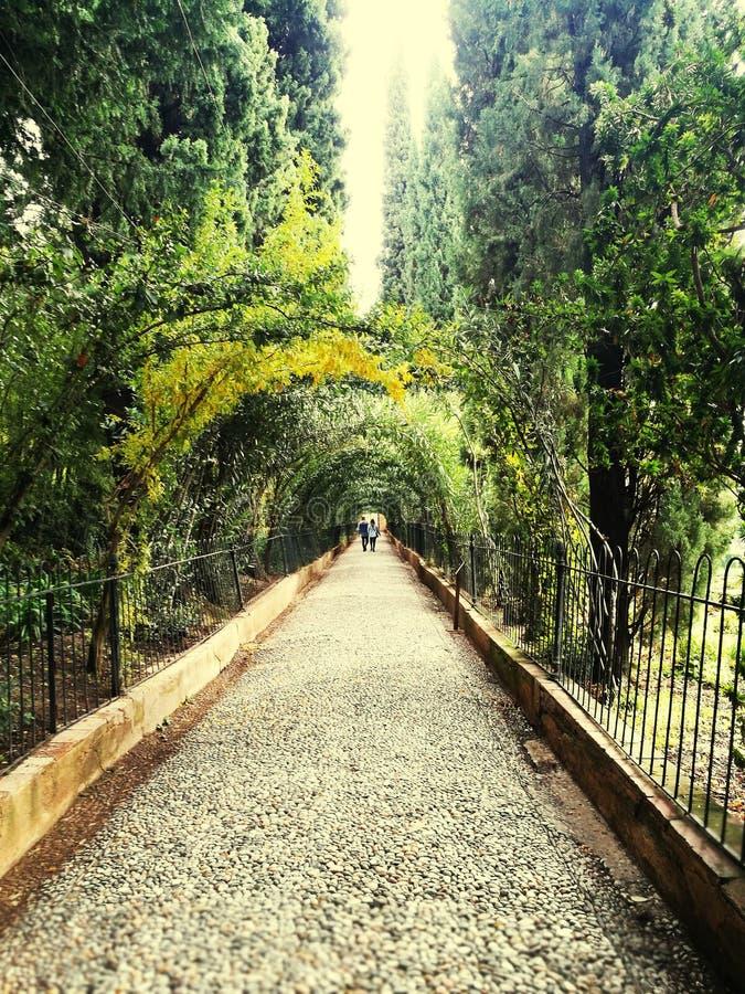 Paseo romántico fotos de archivo