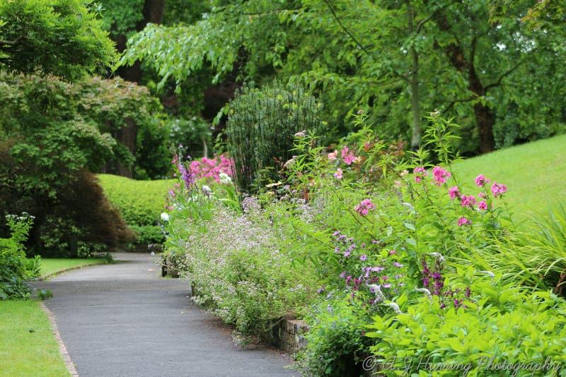 Paseo tranquilo por el jardín fotos de archivo libres de regalías