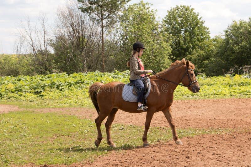 Paseos de la muchacha en caballo fotos de archivo libres de regalías