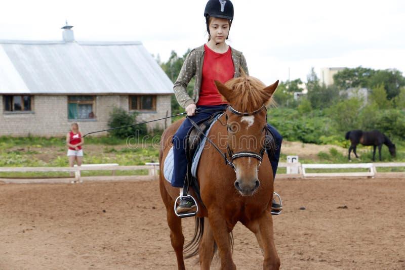 Paseos de la muchacha en caballo en un campo imágenes de archivo libres de regalías