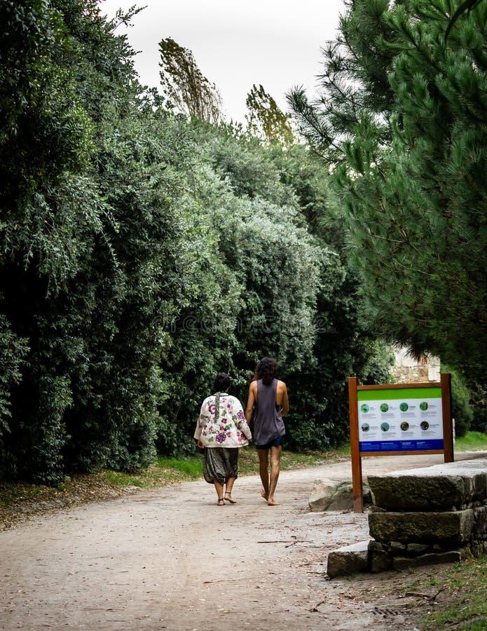 Paseos de los pares del hippie en el parque fotografía de archivo