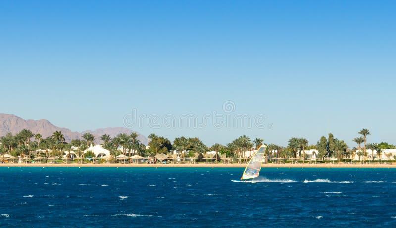 Paseos del Windsurfer en el fondo de la playa con las palmeras y las montañas rocosas en Egipto Dahab Sinaí del sur foto de archivo libre de regalías