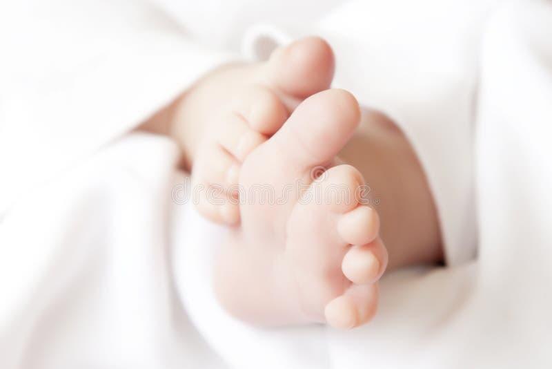 Pasgeboren royalty-vrije stock afbeelding