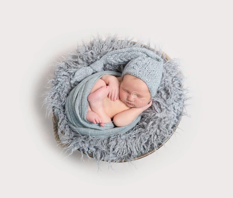 Pasgeboren die slaap in zijn omslag wordt gekruld, topview stock fotografie
