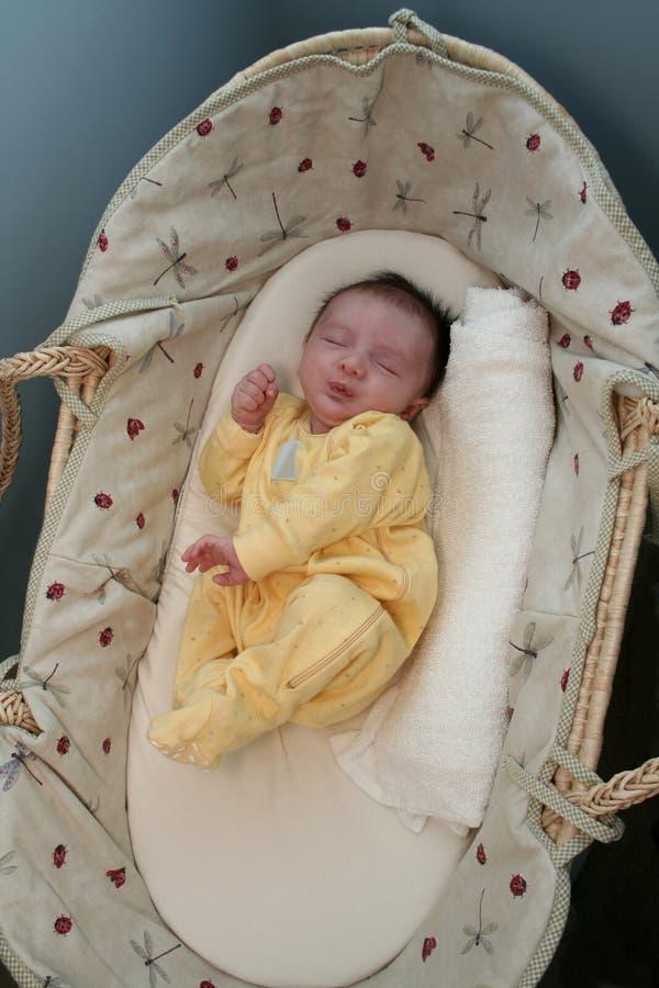 Pasgeboren over blauw stock fotografie