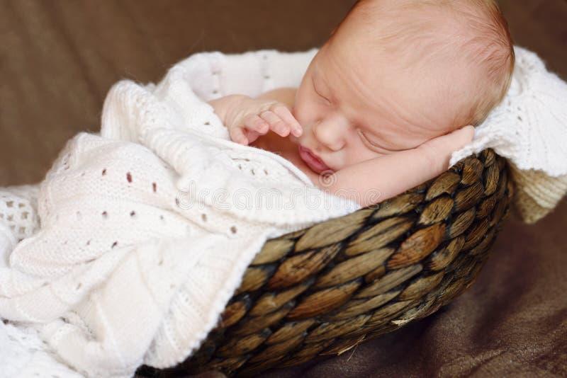 Pasgeboren slaap in mand royalty-vrije stock foto