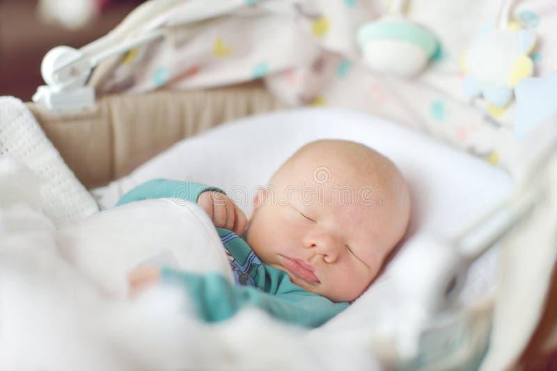 Pasgeboren slaap in voederbak stock afbeelding