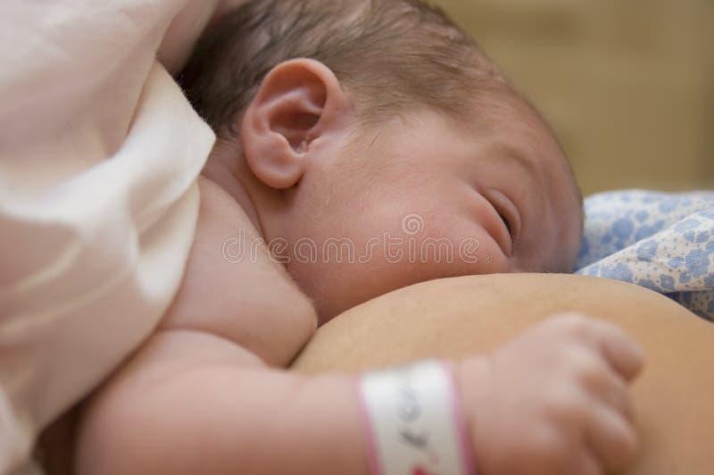 Pasgeboren voedende baby royalty-vrije stock foto's
