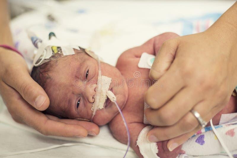 Pasgeboren voorbarige baby in het NICU-intensive care stock foto