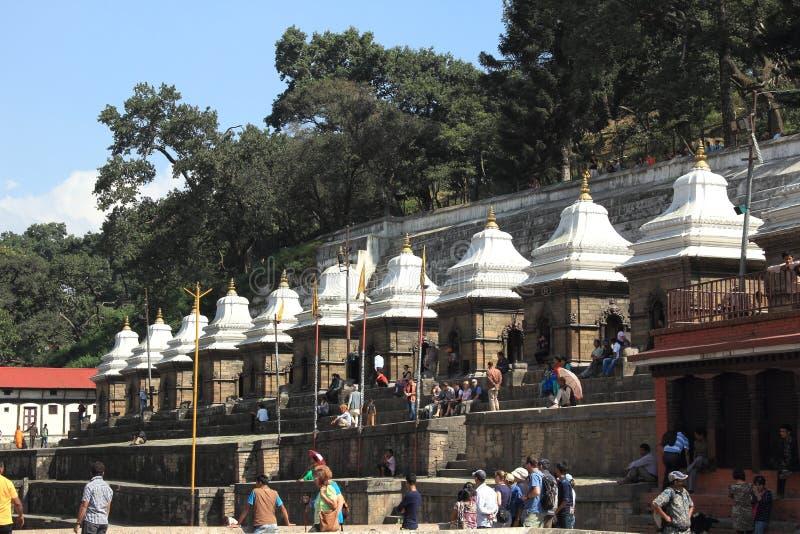 Pashupatinath寺庙。 库存图片
