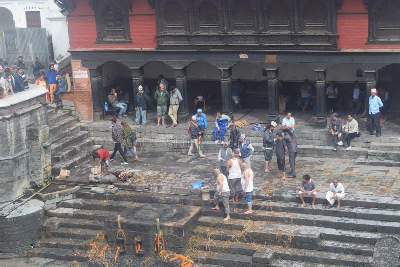 pashupatinath寺庙加德满都尼泊尔 免版税库存图片