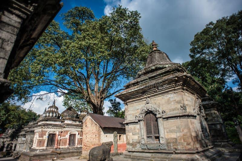 Pashupatinath寺庙,加德满都,尼泊尔 免版税图库摄影