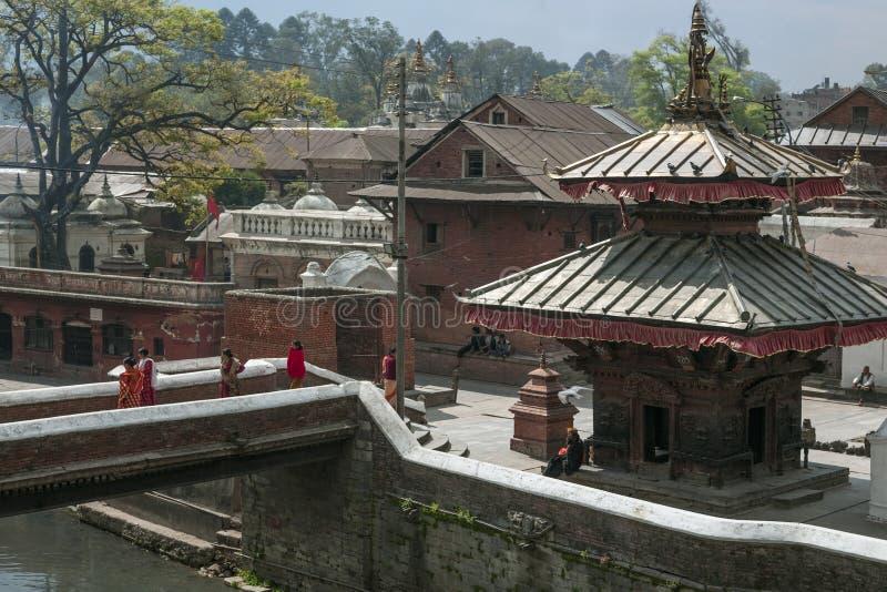 Pashupatinath寺庙-加德满都-尼泊尔 免版税图库摄影
