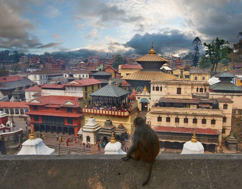 Pashupatinath 免版税库存图片