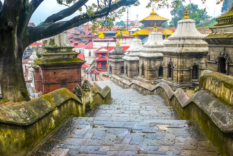 Pashupatinath-Tempel, Kathmandu, Nepal lizenzfreie stockfotos
