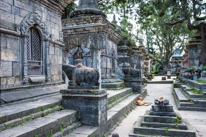 Pashupatinath temple complex in Kathmandu. Nepal stock photography
