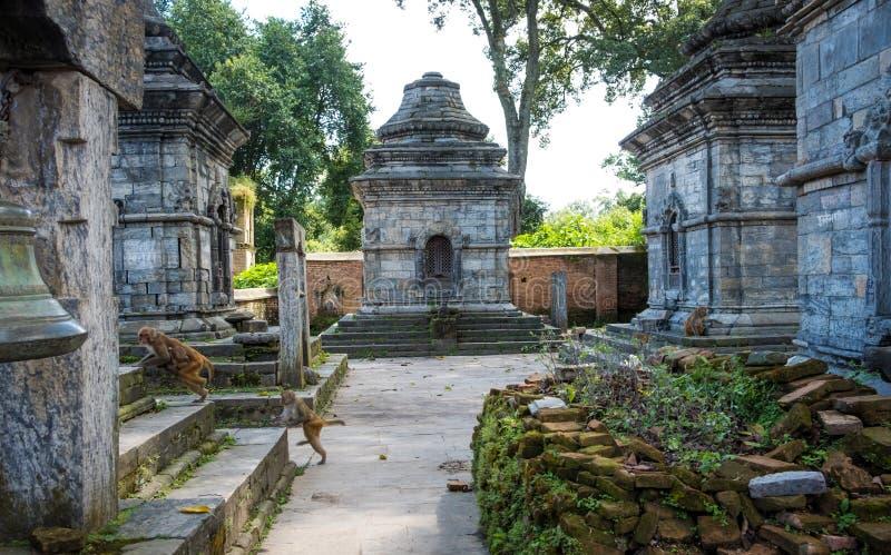 Pashupatinath temple complex in Kathmandu stock photos