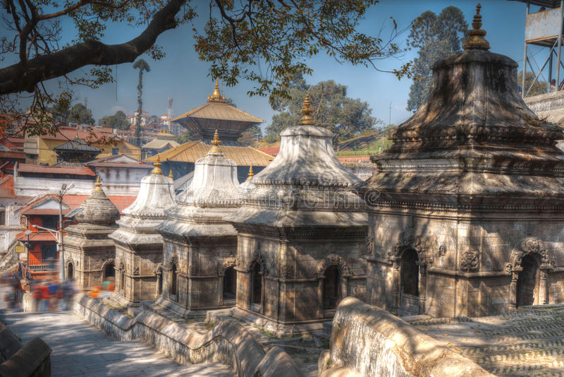 Pashupatinath Temple. Freely walk monkey. Votive temples and shrines in a row at Pashupatinath Temple, Kathmandu, Nepal stock image