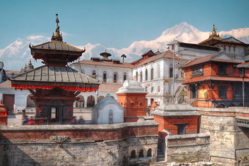 Pashupatinath Temple. Freely walk monkey. Votive temples and shrines in a row at Pashupatinath Temple, Kathmandu, Nepal royalty free stock images