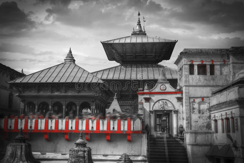 Pashupatinath Temple. Freely walk monkey. Votive temples and shrines in a row at Pashupatinath Temple, Kathmandu, Nepal. black and white photography stock photography