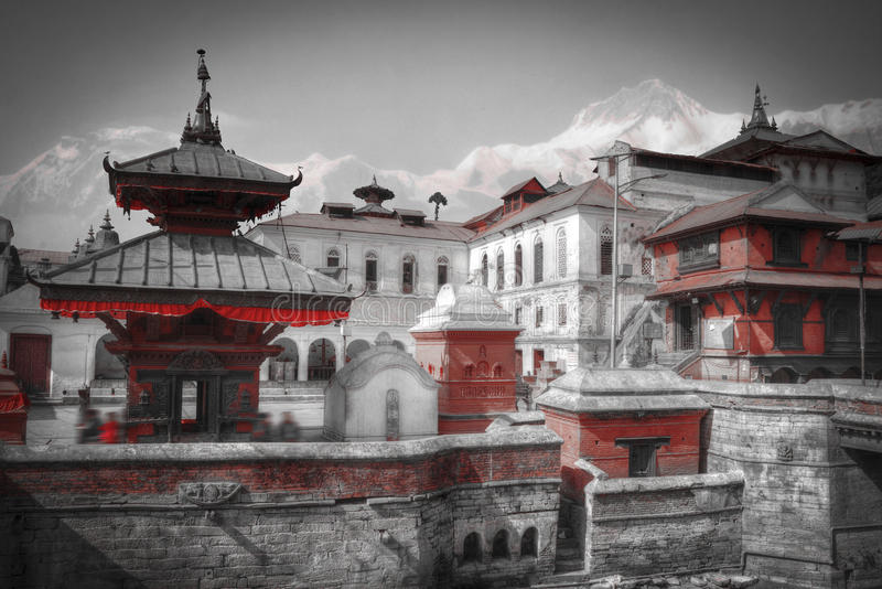 Pashupatinath Temple. Freely walk monkey. Votive temples and shrines in a row at Pashupatinath Temple, Kathmandu, Nepal. black and white photography royalty free stock photos