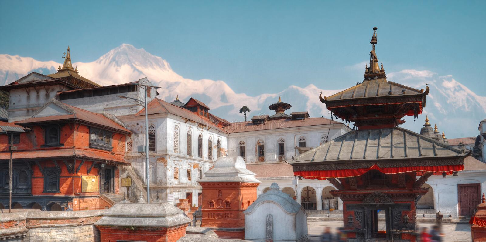 Pashupatinath Temple. Freely walk monkey. Votive temples and shrines in a row at Pashupatinath Temple, Kathmandu, Nepal royalty free stock photo