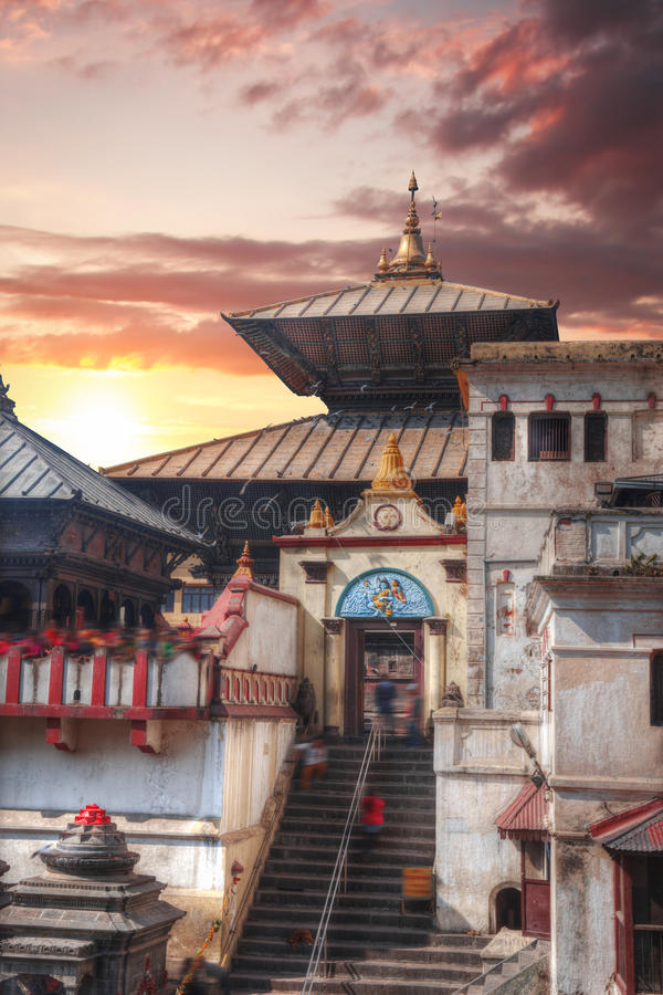 Pashupatinath Temple. Freely walk monkey. Votive temples and shrines in a row at Pashupatinath Temple, Kathmandu, Nepal royalty free stock image